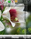 Flowers's Beauty theme screenshot