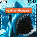Tiburon es el tema de pantalla