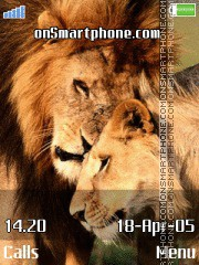 Lions Tenderness es el tema de pantalla