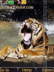 Tiger 45 theme screenshot