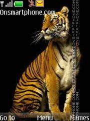 Tiger 46 theme screenshot