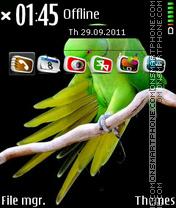Parrot 09 es el tema de pantalla