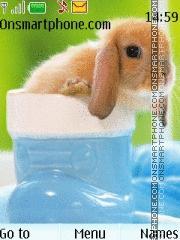 Cute rabbit theme screenshot