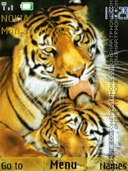 Tigers 04 theme screenshot