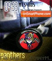 Florida Panters theme screenshot