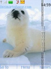 Seal es el tema de pantalla