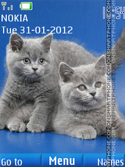 British Shorthair Kittens theme screenshot