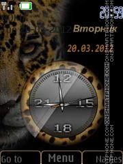 Big Cat theme screenshot