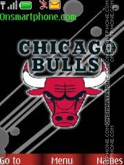 Chicago Bulls theme screenshot