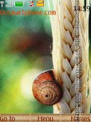 Snail theme screenshot