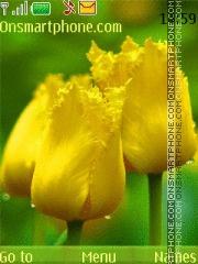 Yellow Tulip theme screenshot