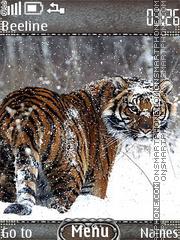 Tiger winter es el tema de pantalla