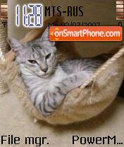 Cat zzz theme screenshot