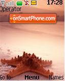Sea Shells theme screenshot