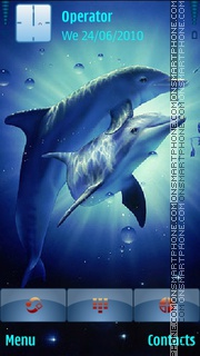 Dolphins theme screenshot