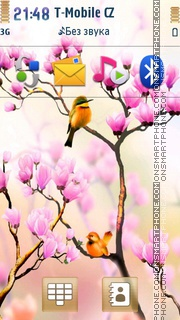 Spring Birds theme screenshot