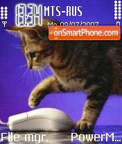 Funny Cats theme screenshot
