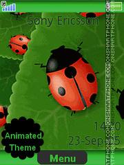 Ladybirds es el tema de pantalla