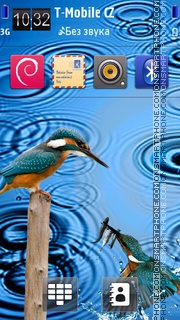 First Rain and Bird theme screenshot
