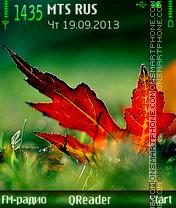 Color-Of-Fall es el tema de pantalla