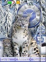 Snow leopards theme screenshot