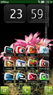 Cactus HD 01 es el tema de pantalla