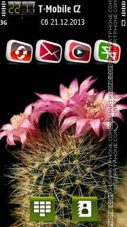 Cactus Flower theme screenshot