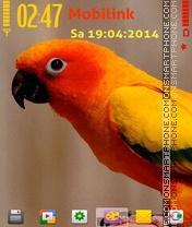 Alone parrot es el tema de pantalla