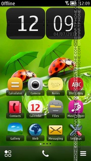 Ladybug on Leaf HD theme screenshot