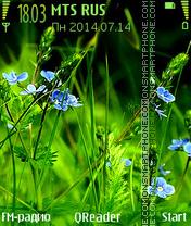 Grass+ es el tema de pantalla