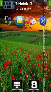 Poppy Field 02 es el tema de pantalla