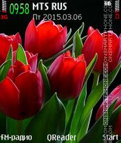 Red Tulips es el tema de pantalla
