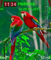 Parrots Couple es el tema de pantalla