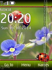 Ladybug 05 es el tema de pantalla