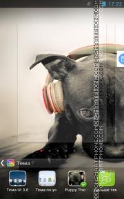 Puppy 11 es el tema de pantalla