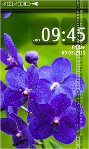 Blue flowers 06 theme screenshot