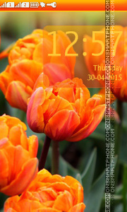 Orange Tulips theme screenshot