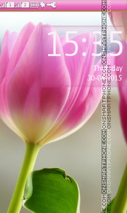 Tulips in Spring theme screenshot