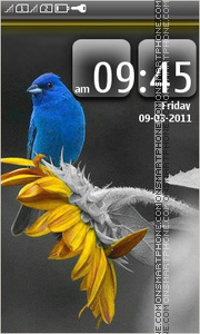 Blue Bird 02 theme screenshot
