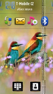 Colorful Birds es el tema de pantalla