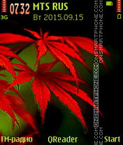 Red Leaves es el tema de pantalla