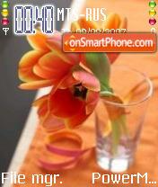 Orange Tulips theme screenshot