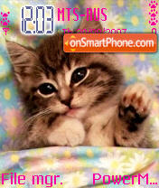 Tender Kitty theme screenshot