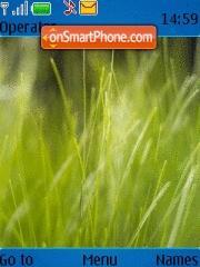 Fresh Grass Vista es el tema de pantalla