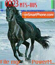 Horse Grif theme screenshot