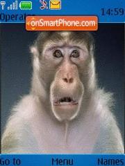 Monkey 01 theme screenshot