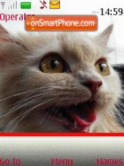 Cats 06 theme screenshot