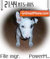 Doggy 01 es el tema de pantalla