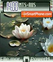 Water Lily theme screenshot
