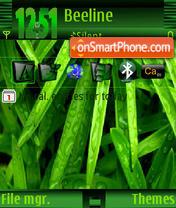 Grass Vista es el tema de pantalla